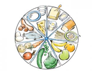 Spelet Kost och hälsa