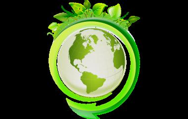 Spelet Ekologi - ekosystem