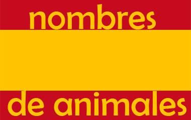 Spelet Spanska djurnamn