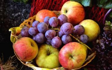 Spelet Franska frukter och bär
