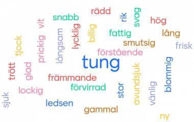 Spelet Adjektiv som beskriver