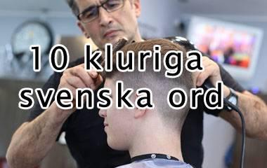 Spelet 10 kluriga svenska ord