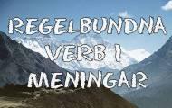 Regelbundna verb i meningar