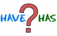 Have eller Has