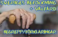 Spela Begrepp inom Sveriges befolkning och välfärd