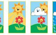 Blommans livscykel
